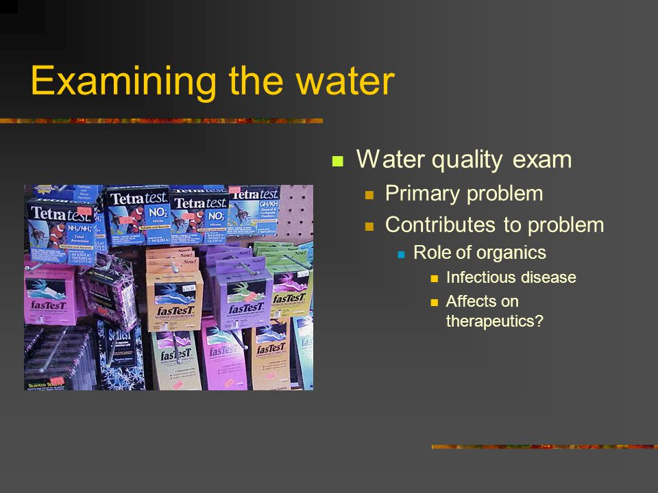 Examining the water Water quality exam Primary problem