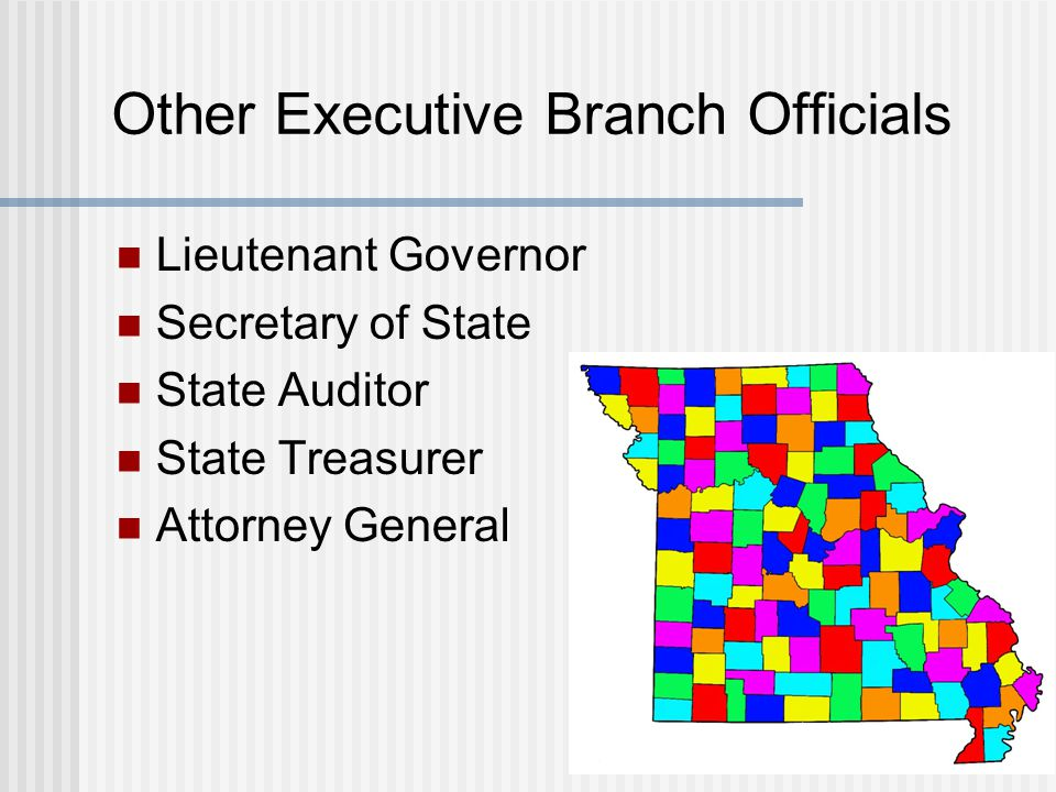 Other Executive Branch Officials