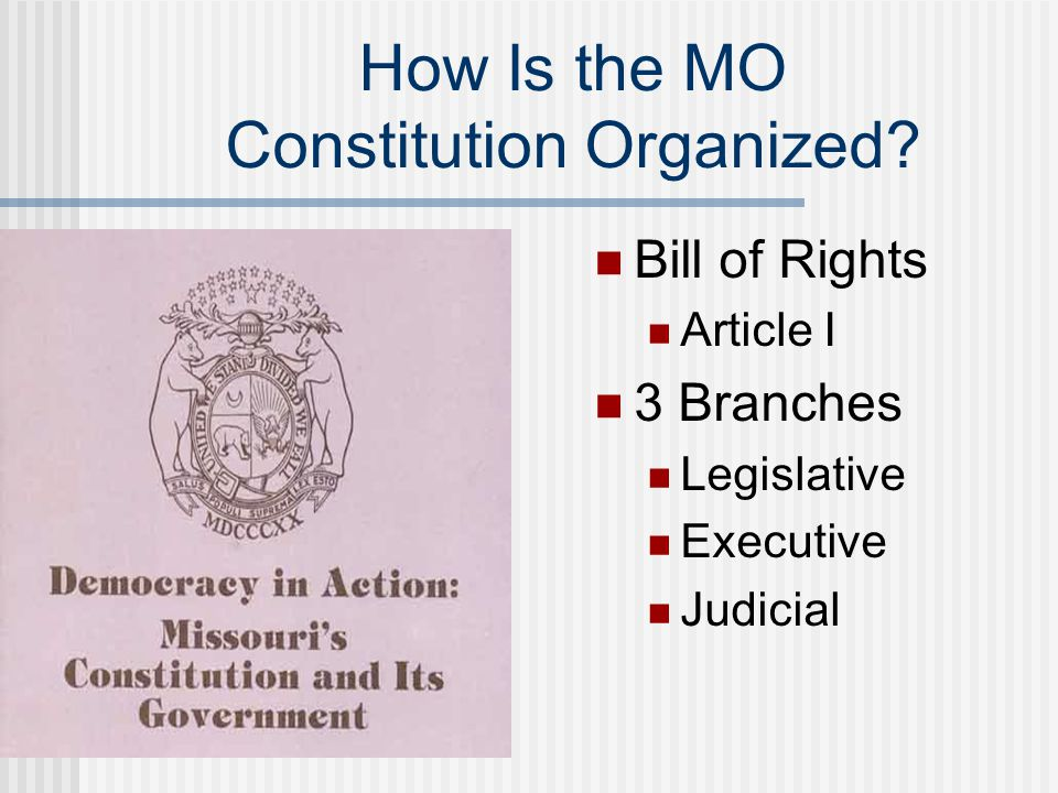 How Is the MO Constitution Organized