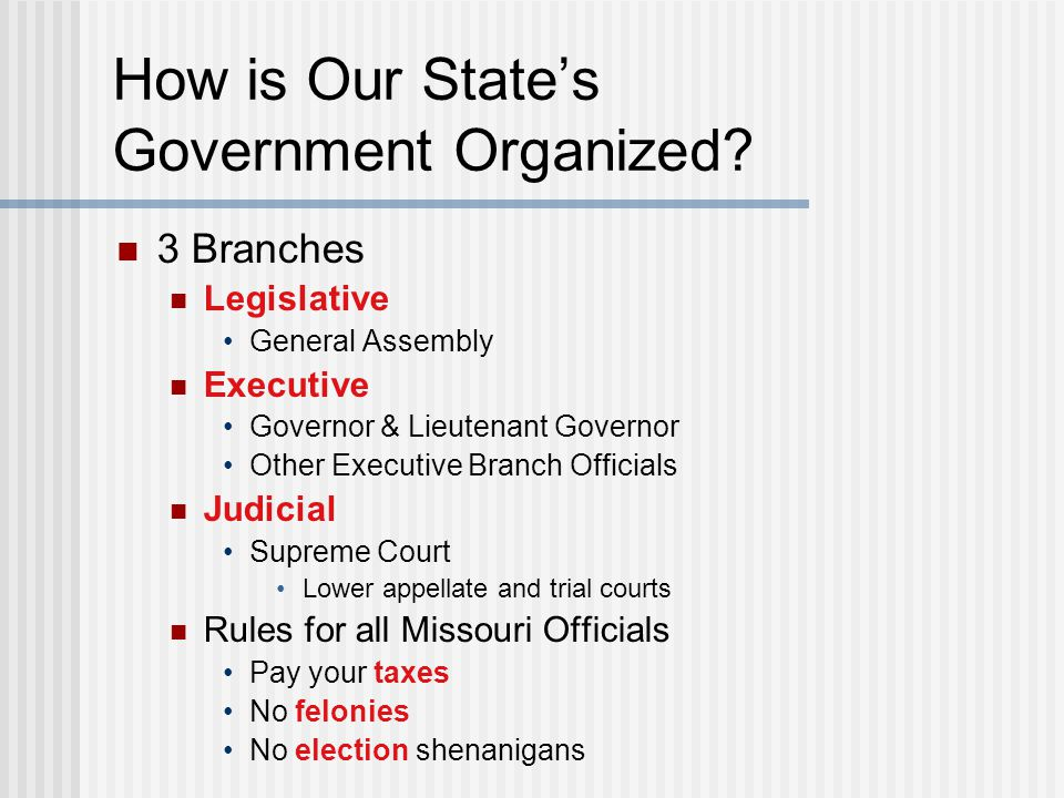 How is Our State's Government Organized