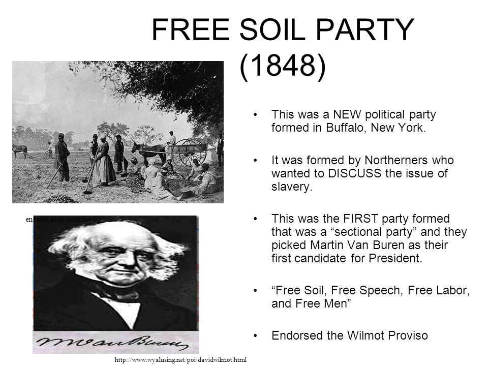 FREE SOIL PARTY (1848) This was a NEW political party formed in Buffalo, New York.
