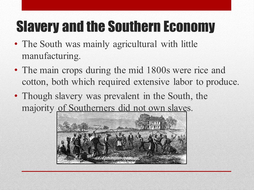 Slavery and the Southern Economy