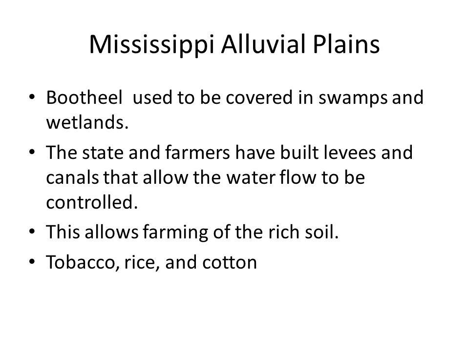 Mississippi Alluvial Plains