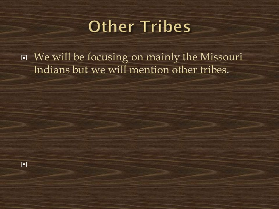 Other Tribes We will be focusing on mainly the Missouri Indians but we will mention other tribes.