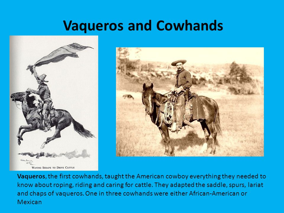 Vaqueros and Cowhands