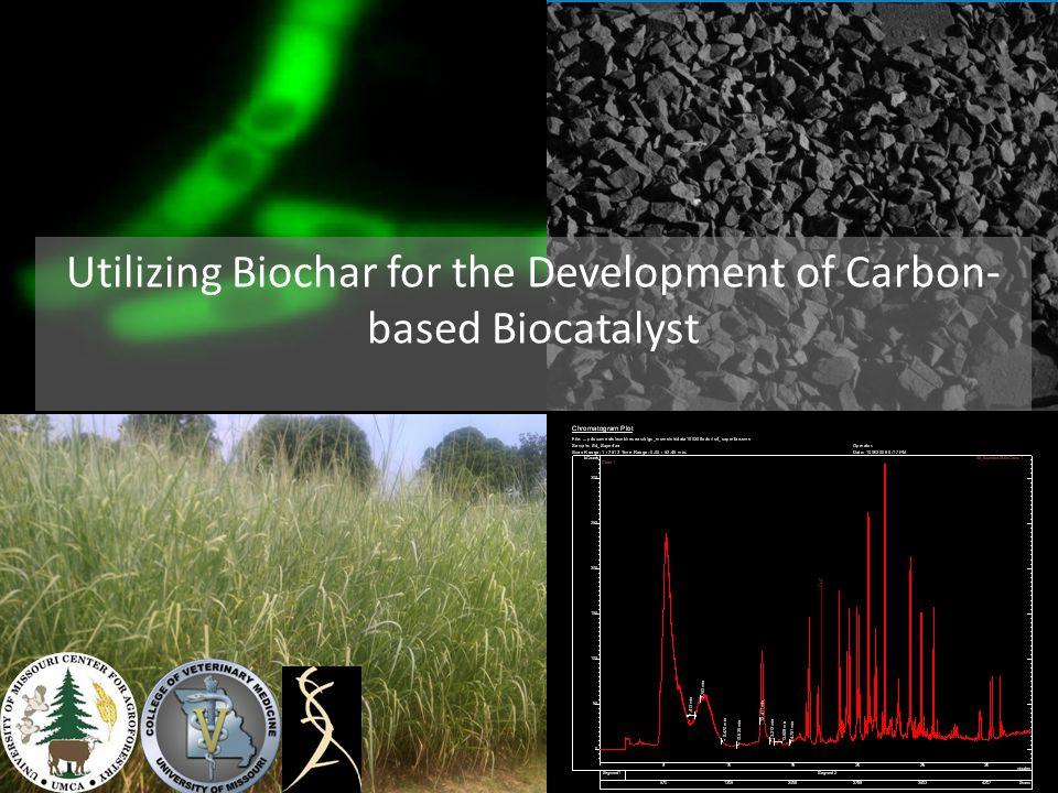 Utilizing Biochar for the Development of Carbon-based Biocatalyst