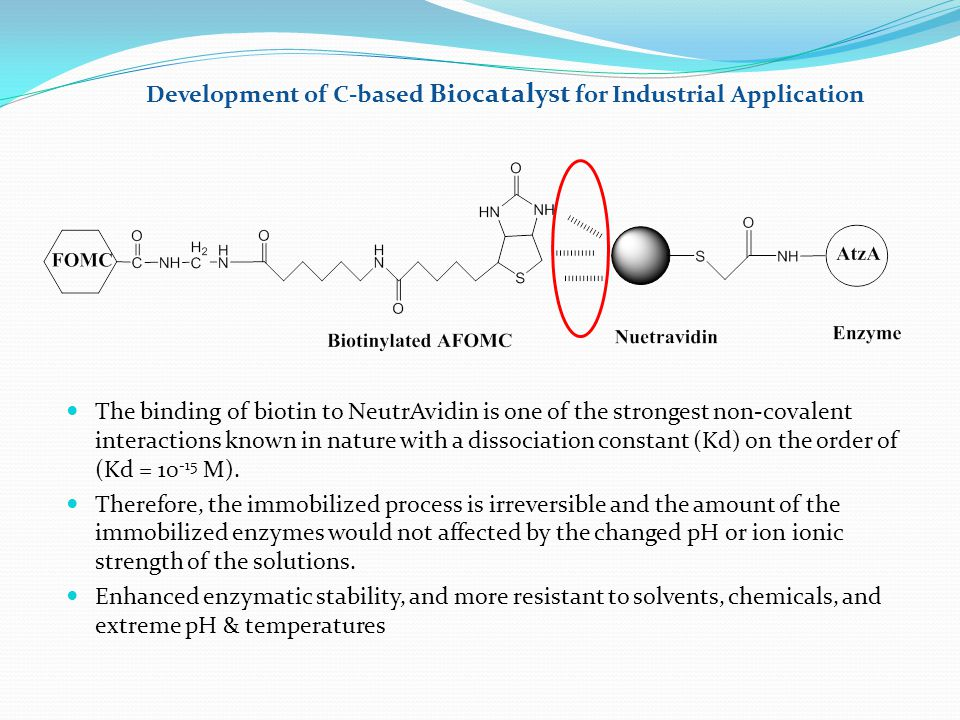 Development of C-based Biocatalyst for Industrial Application