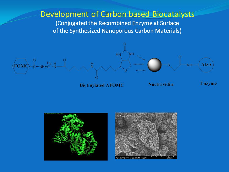 Development of Carbon based Biocatalysts (Conjugated the Recombined Enzyme at Surface of the Synthesized Nanoporous Carbon Materials)