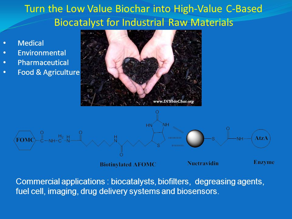 Turn the Low Value Biochar into High-Value C-Based Biocatalyst for Industrial Raw Materials