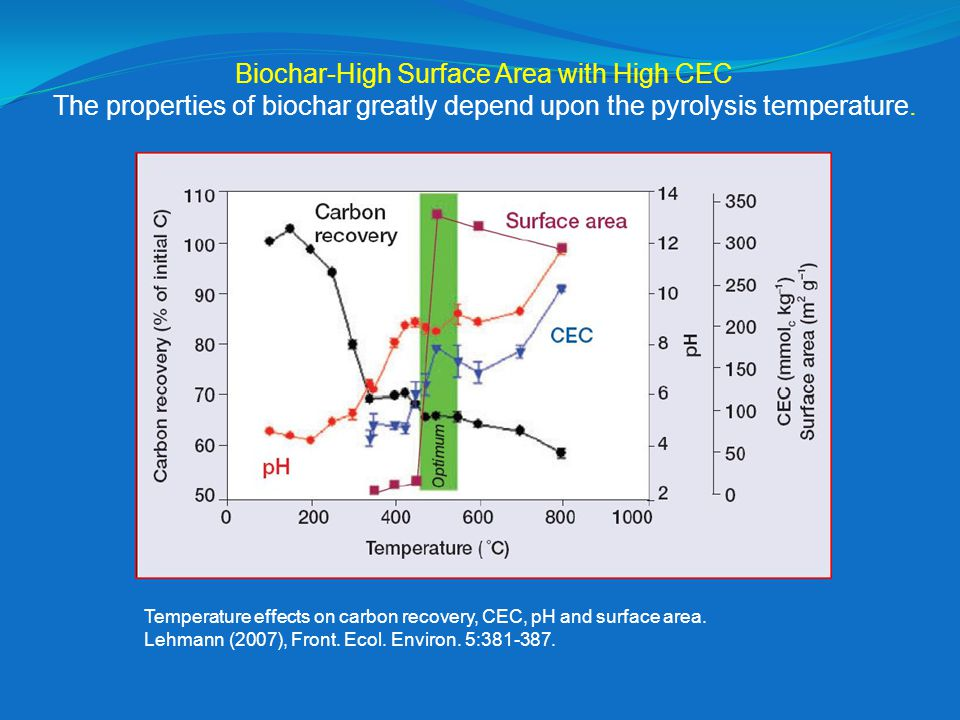 Biochar-High Surface Area with High CEC