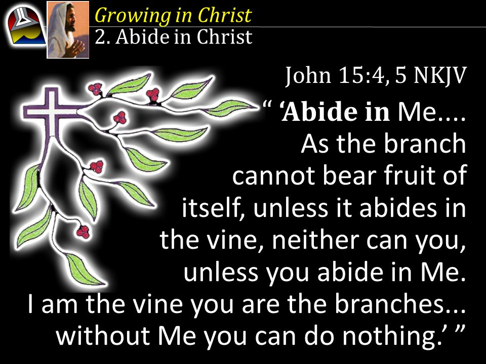 Growing in Christ 2. Abide in Christ. John 15:4, 5 NKJV.