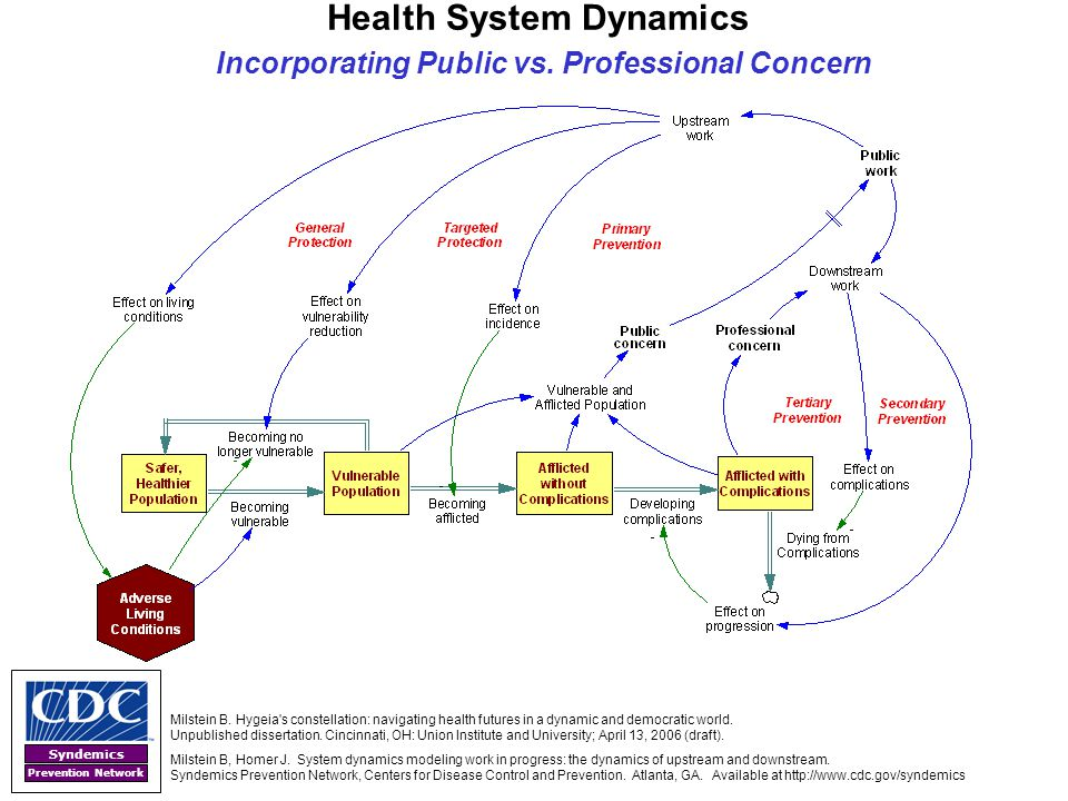 Health System Dynamics Incorporating Public vs. Professional Concern