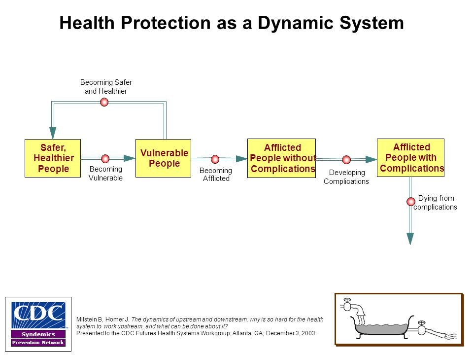 Health Protection as a Dynamic System