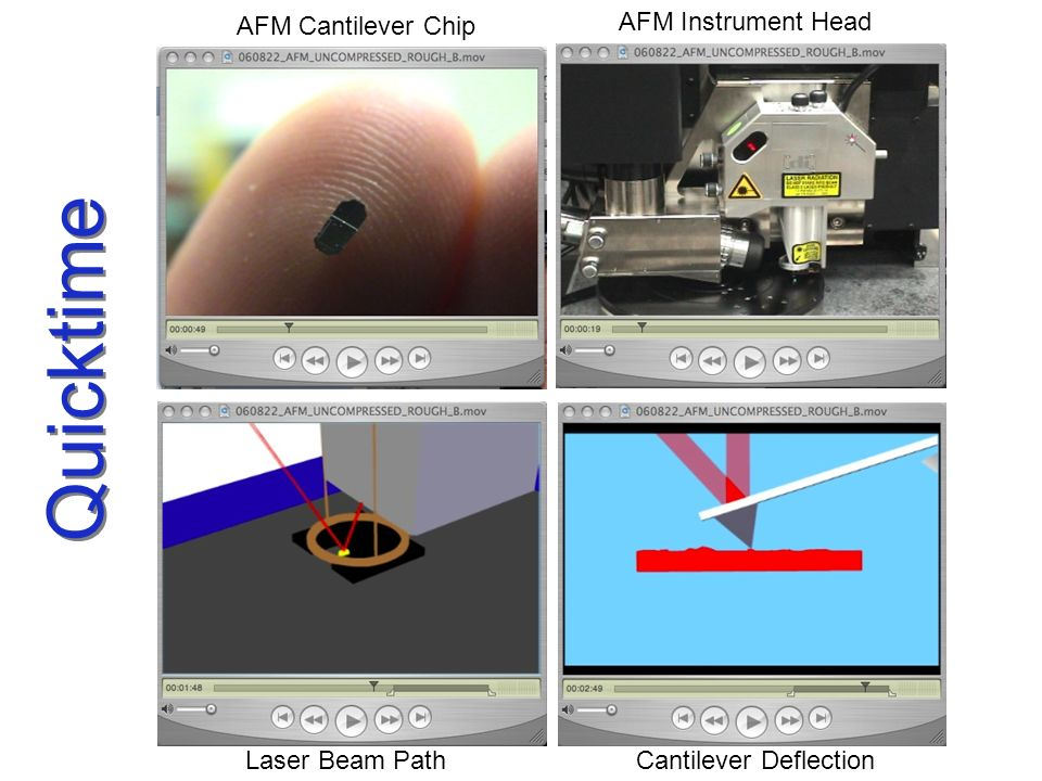 Quicktime AFM Cantilever Chip AFM Instrument Head Laser Beam Path