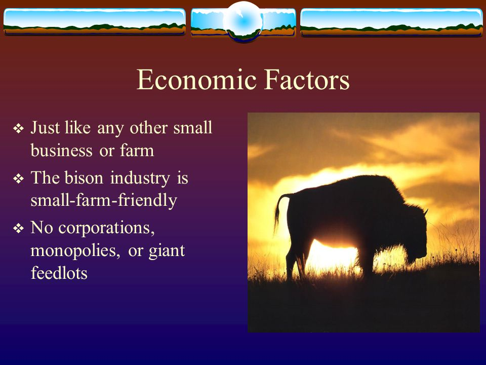 Economic Factors Just like any other small business or farm