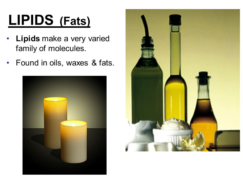LIPIDS (Fats) Lipids make a very varied family of molecules.