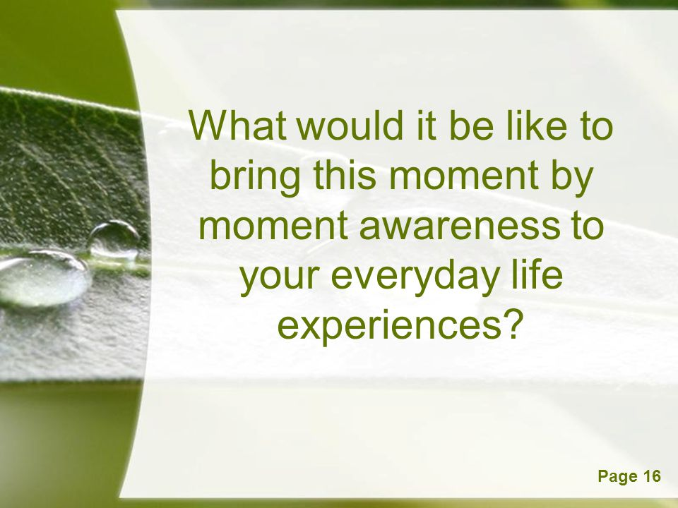 What would it be like to bring this moment by moment awareness to your everyday life experiences
