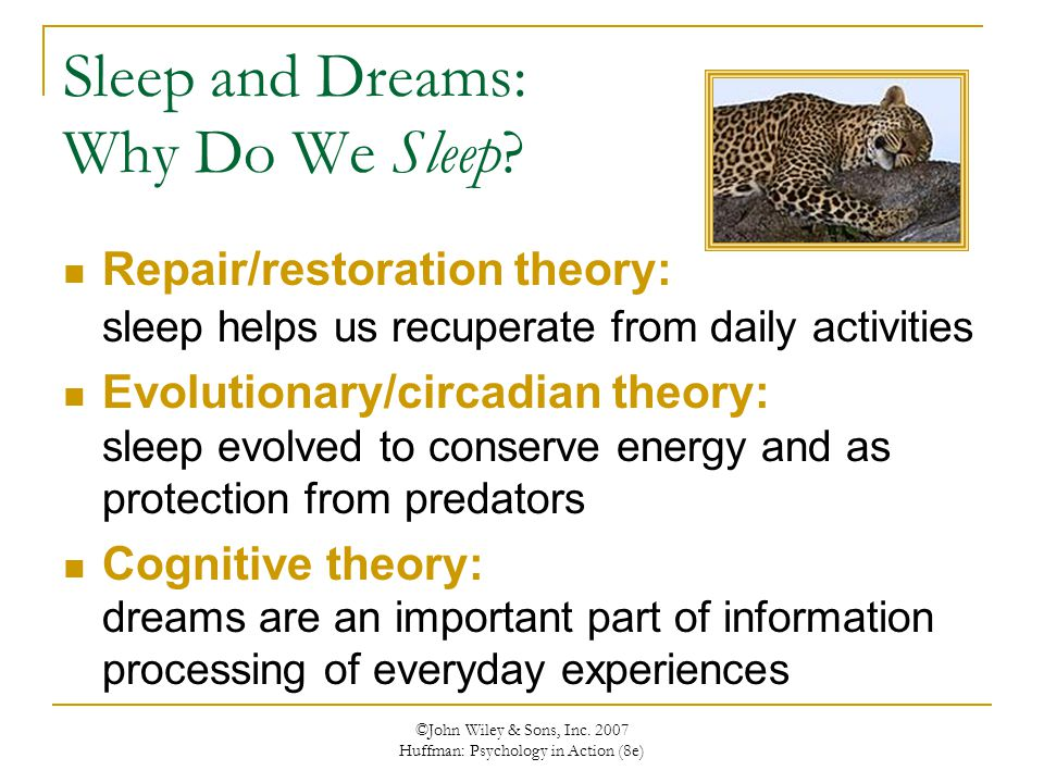 Sleep and Dreams: Why Do We Sleep