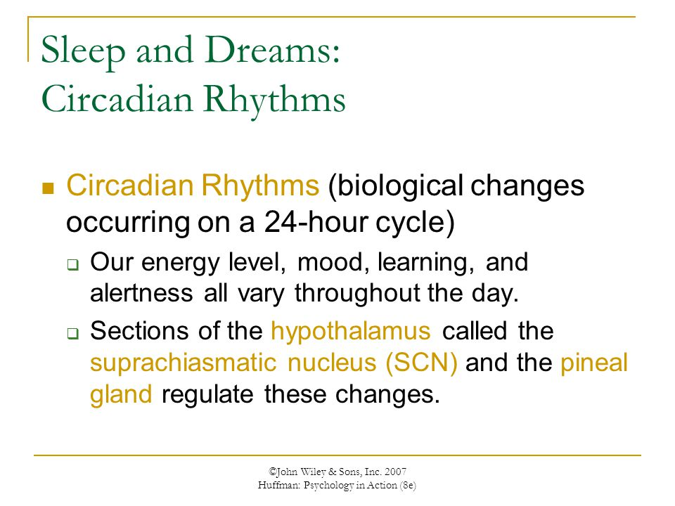 Sleep and Dreams: Circadian Rhythms