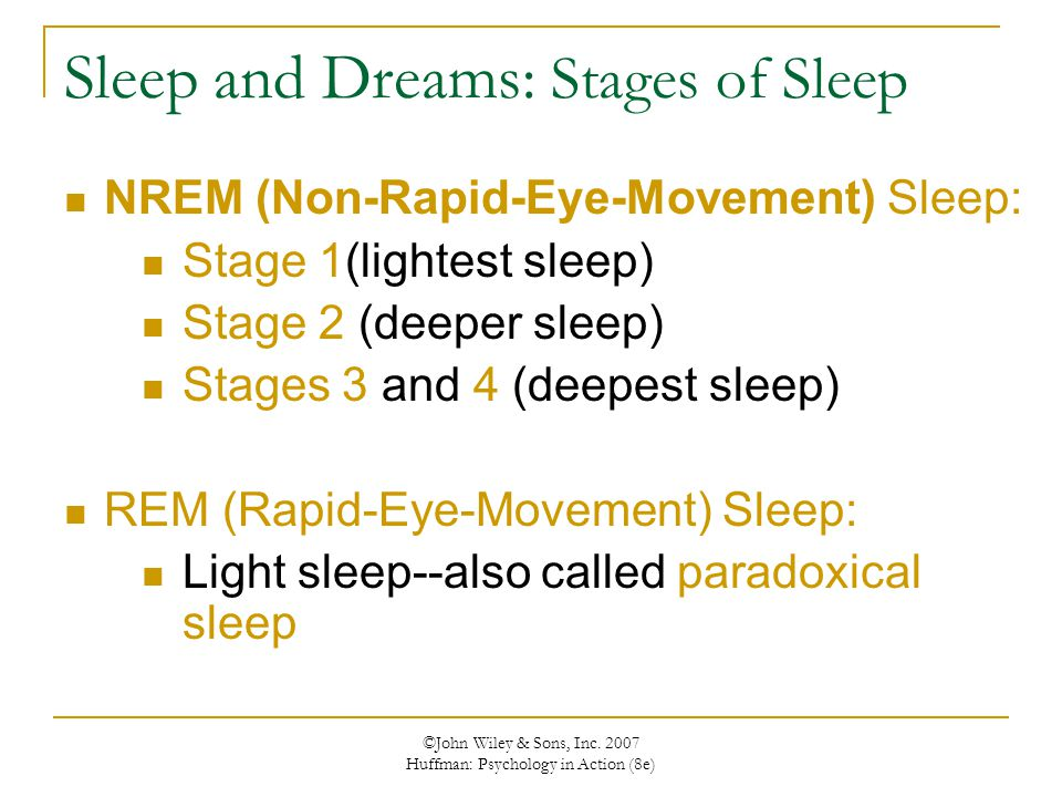 Sleep and Dreams: Stages of Sleep