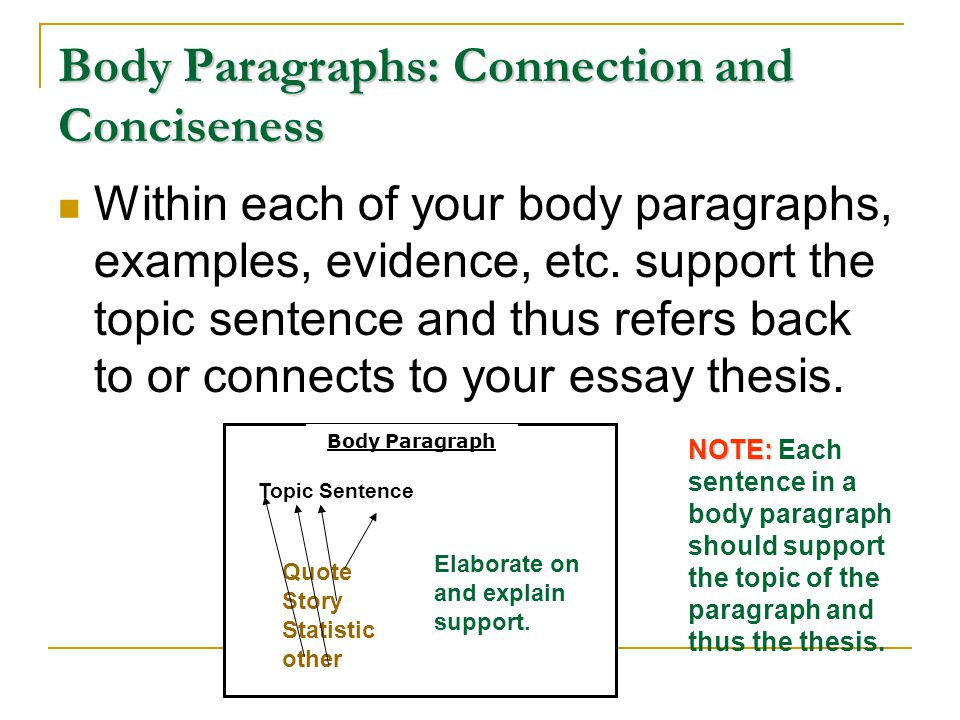 Body Paragraphs: Connection and Conciseness