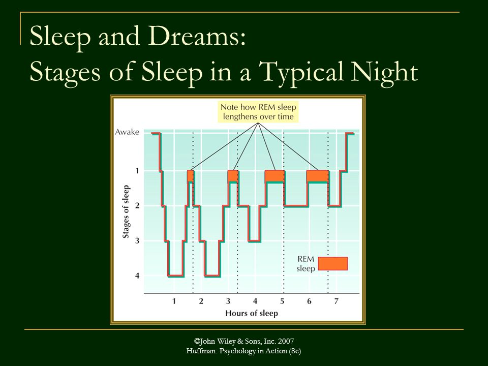 Sleep and Dreams: Stages of Sleep in a Typical Night