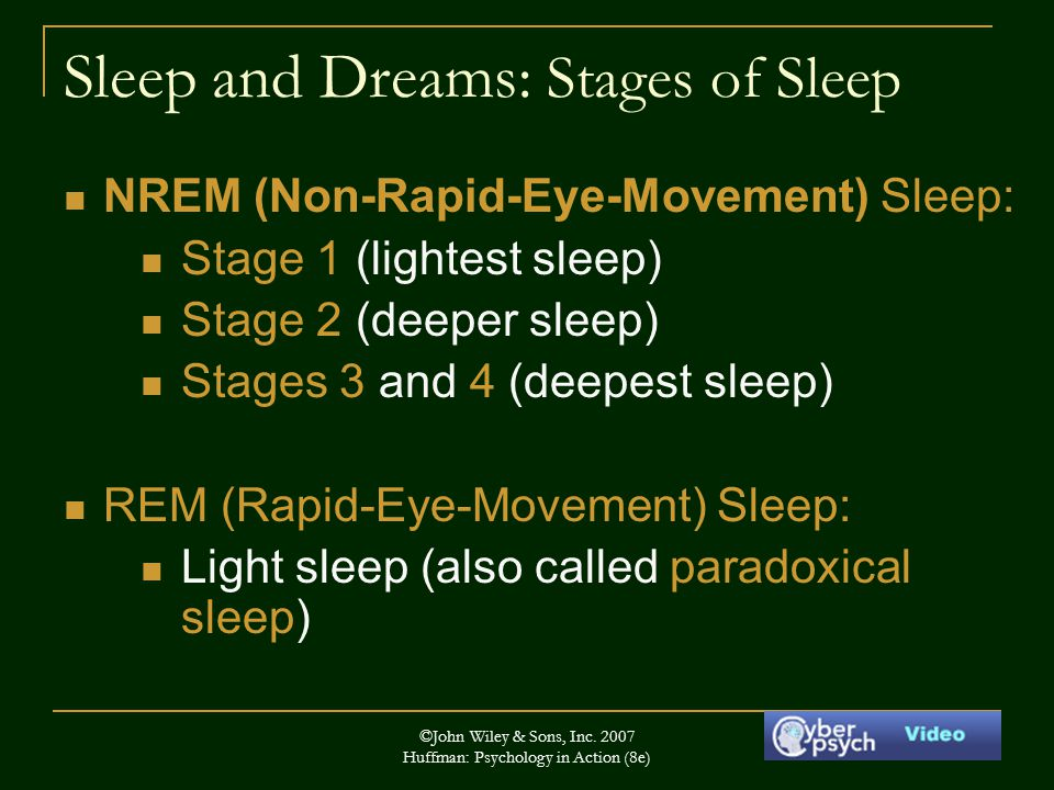 Sleep and Dreams: Stages of Sleep