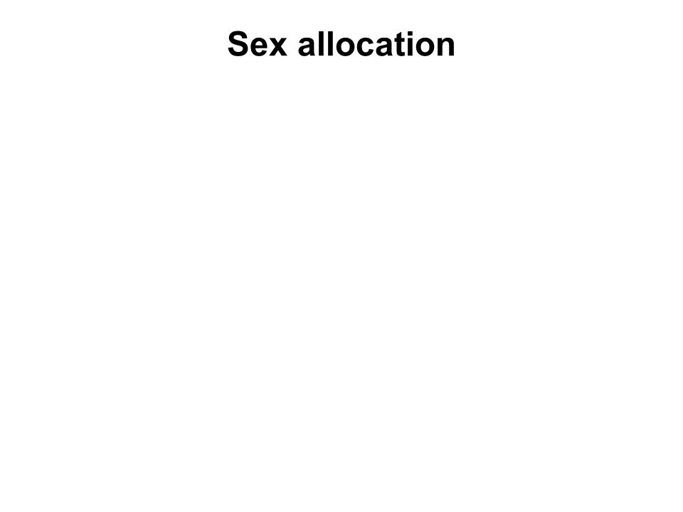 As a result sex allocation is