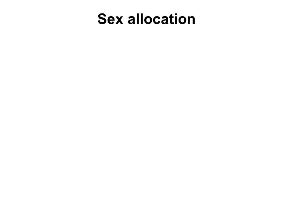 Sex allocation