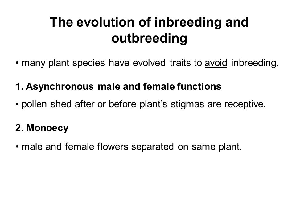 The evolution of inbreeding and outbreeding