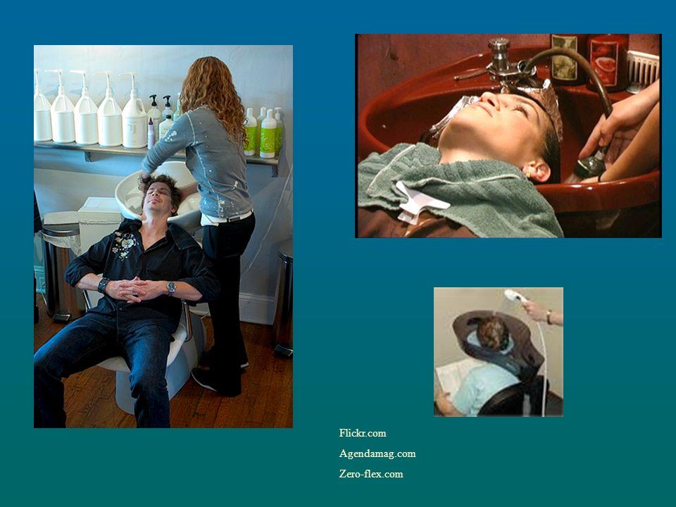 Flickr.com Agendamag.com Zero-flex.com