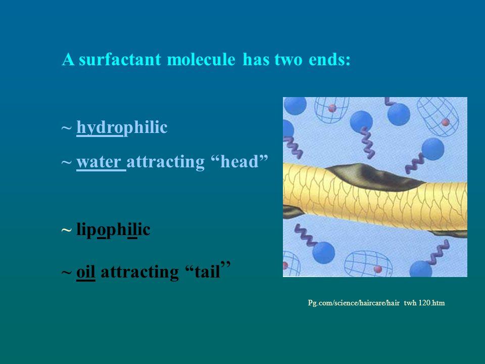 A surfactant molecule has two ends: