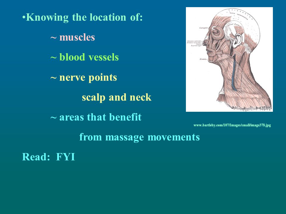 Knowing the location of: ~ muscles ~ blood vessels ~ nerve points