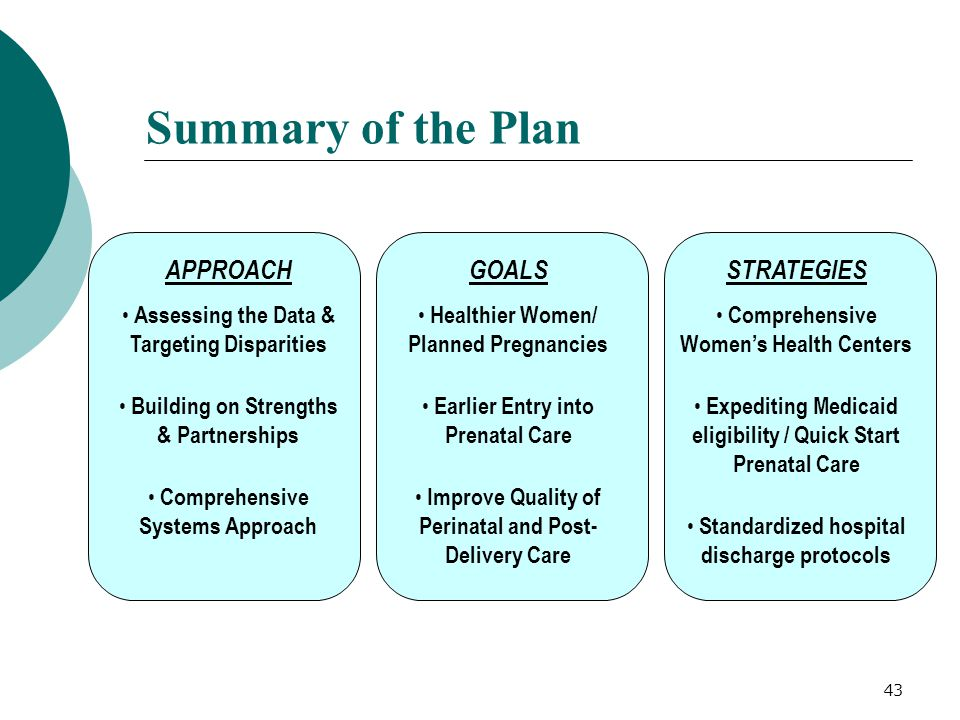 Summary of the Plan APPROACH GOALS STRATEGIES
