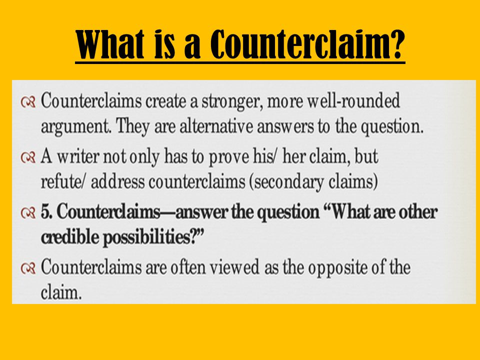 What is a Counterclaim