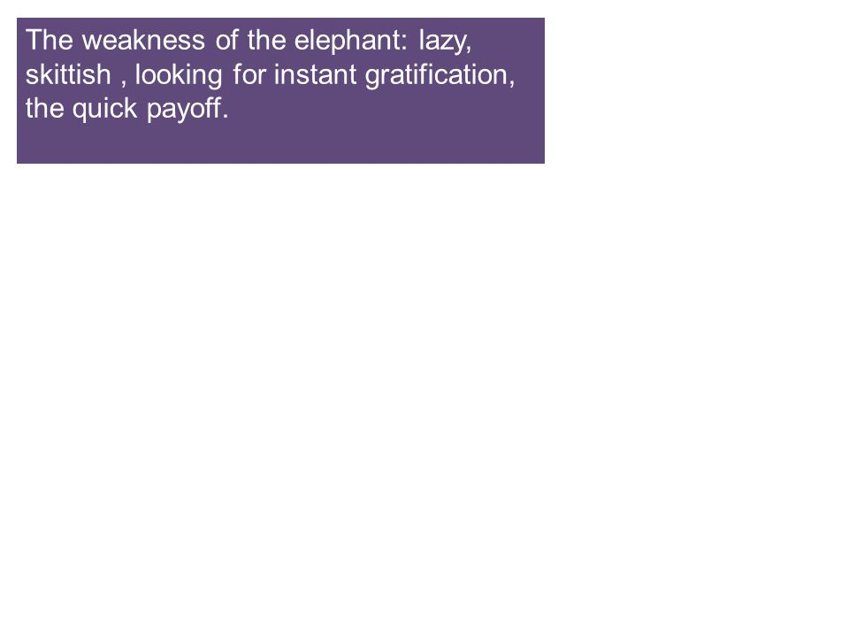 The weakness of the elephant: lazy, skittish , looking for instant gratification, the quick payoff.