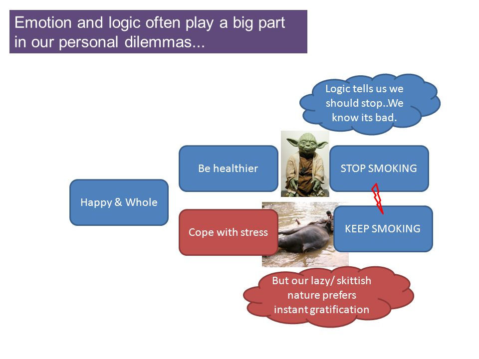 Emotion and logic often play a big part in our personal dilemmas...