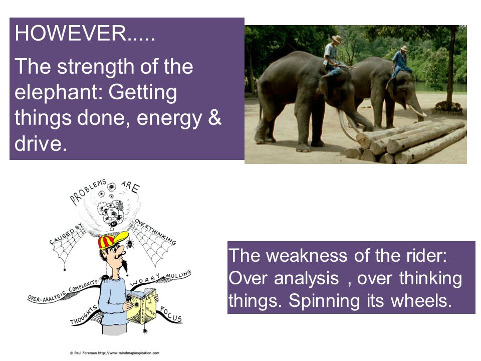 The strength of the elephant: Getting things done, energy & drive.