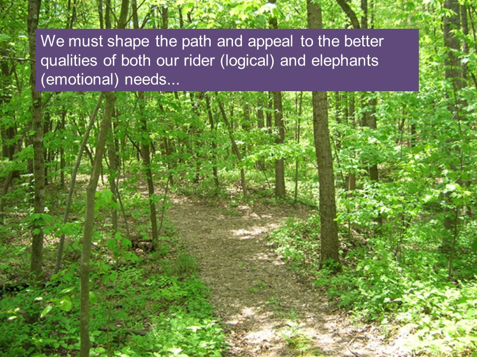 We must shape the path and appeal to the better qualities of both our rider (logical) and elephants (emotional) needs...