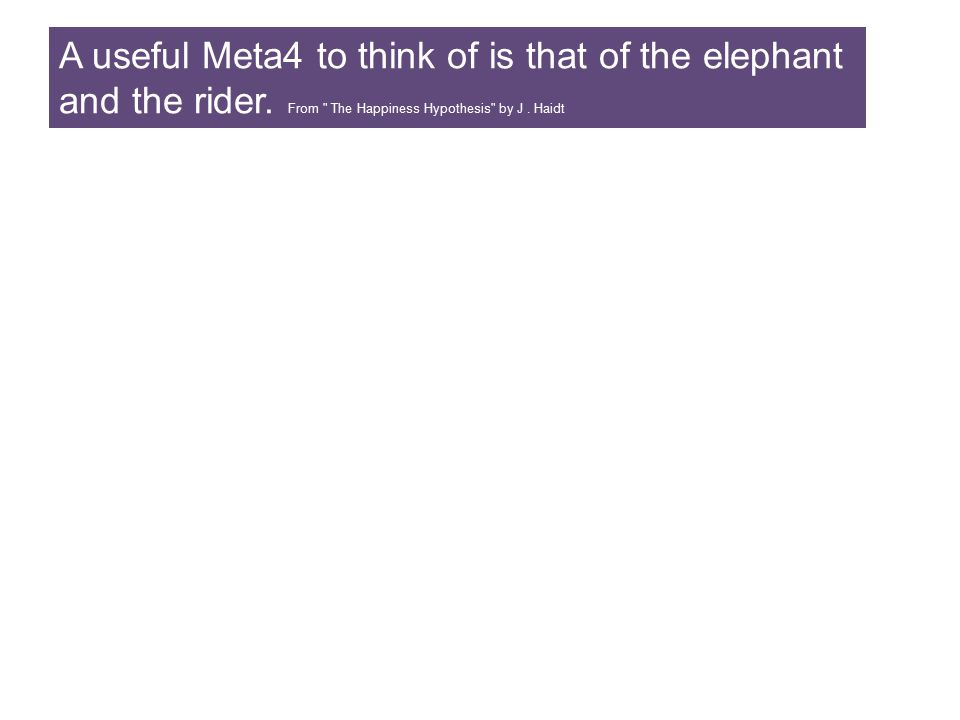 A useful Meta4 to think of is that of the elephant and the rider
