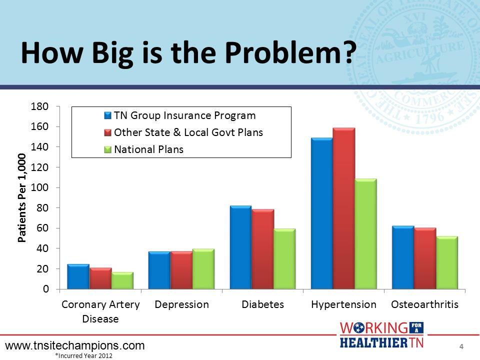 How Big is the Problem www.tnsitechampions.com