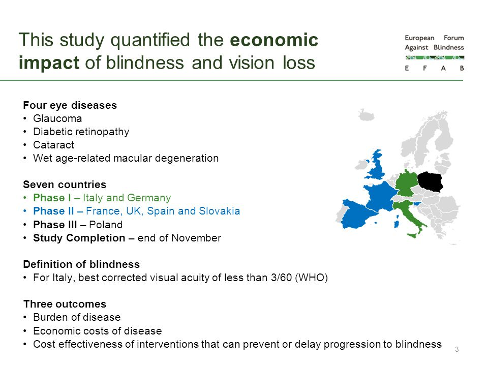 This study quantified the economic impact of blindness and vision loss
