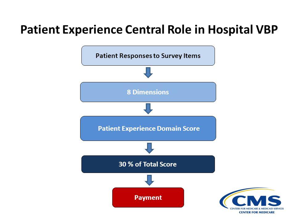 Patient Responses to Survey Items Patient Experience Domain Score