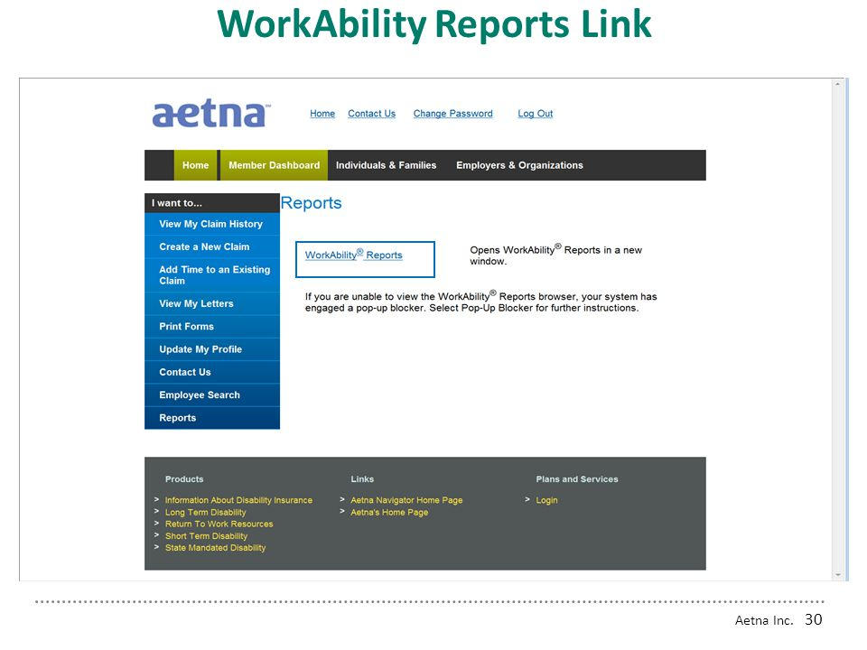 WorkAbility Reports Link
