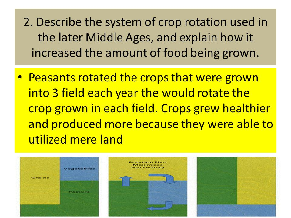 2. Describe the system of crop rotation used in the later Middle Ages, and explain how it increased the amount of food being grown.