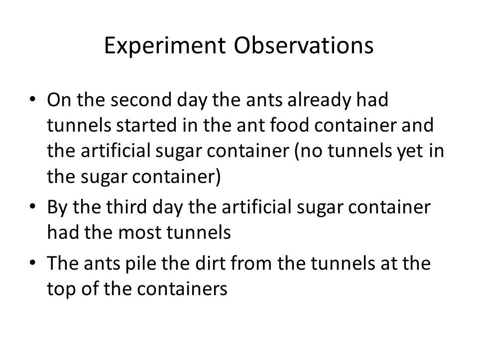 Experiment Observations