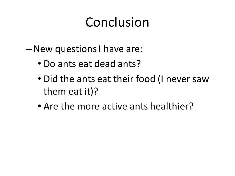 Conclusion New questions I have are: Do ants eat dead ants