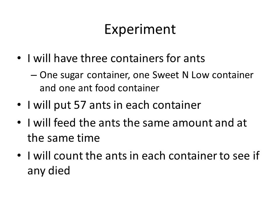 I will have three containers for ants
