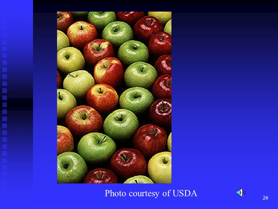 Fruits and vegetables differ widely in color due to variety which is in effect a selection for color pigments.
