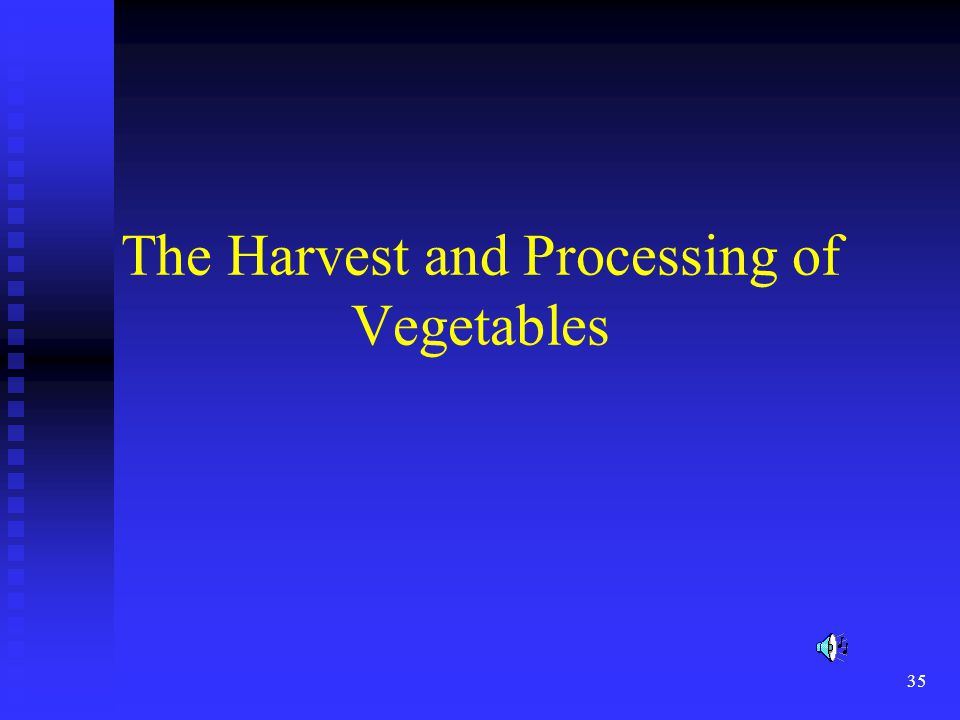 The Harvest and Processing of Vegetables